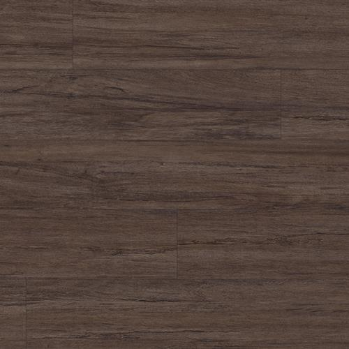 Timeless Impact - Rosewood Brownie