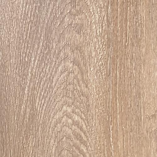 Millennium Oak - Buckhorn