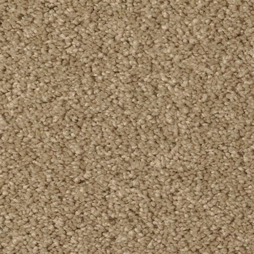 Cotton Club Classic Taupe CT27