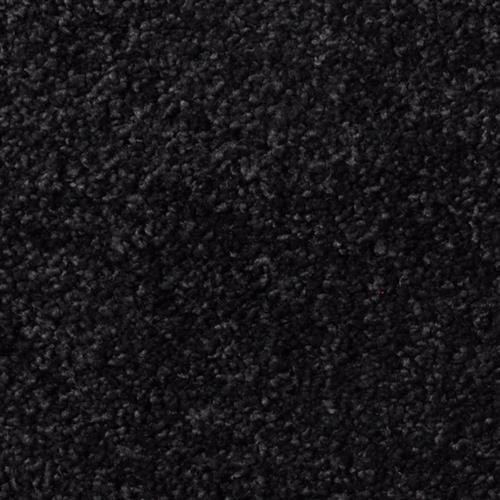 Cotton Club Black Velvet CT36