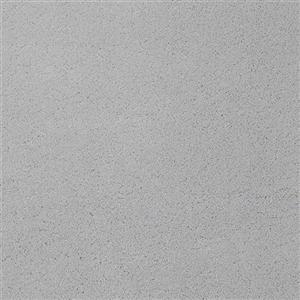 Carpet Chez100 204CH Battleship