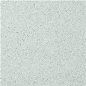 Carpet Chez100 204CH MintCondition