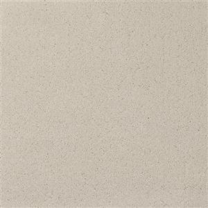 Carpet Chez100 204CH Mist