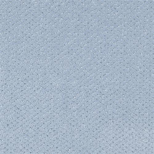 Corvo Hydrangea
