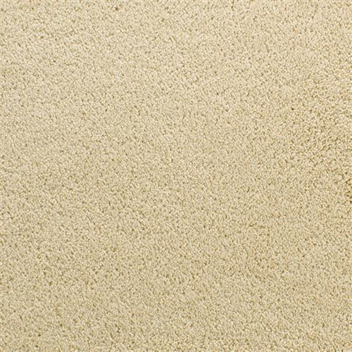 Denali Dry Chamois
