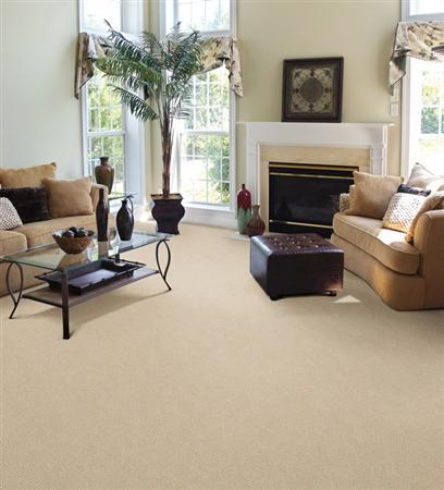 Fabrica Power Point Baked Linen Carpet Franklin Tennessee Carpet Den Interiors