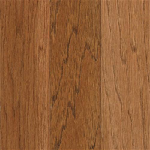 American Classics - Blue Ridge Hickory Plank Spice