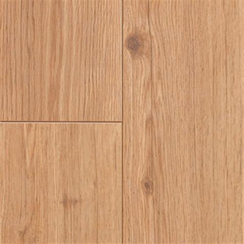 Revolutions Plank - Ontario Oak Honeytone