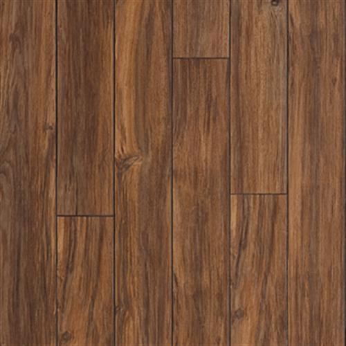 Tasmanian Blackwood Sepia