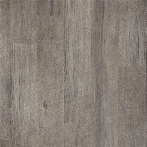Adura Max - Lakeview Dry Timber