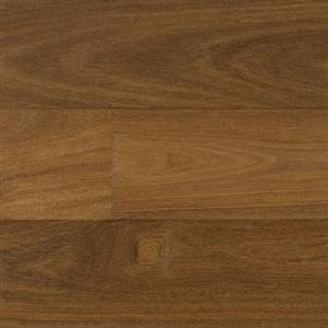 Hardwood ExoticaGibson IPPFENGTC6 BrazilianChestnut614