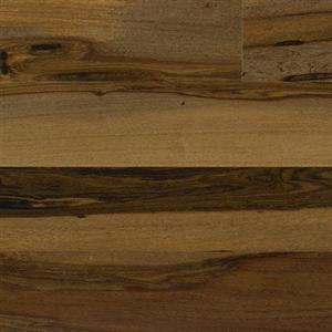 Hardwood ExoticaGibson IPTRENGMP5 BrazilianPecan5