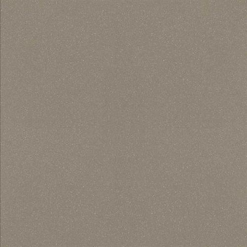 Decorum Dignified Gray DR04