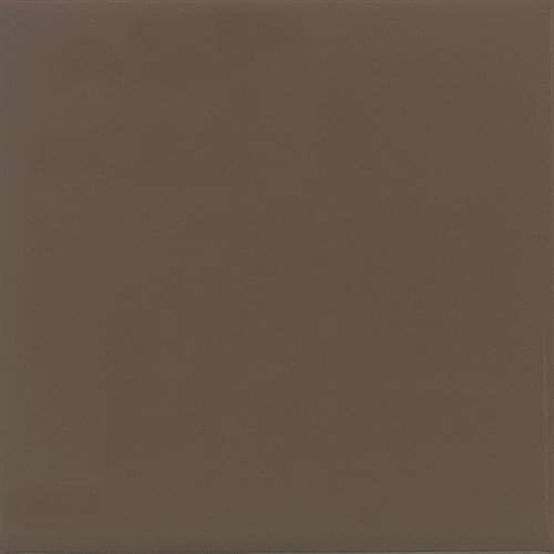 Bright Nutmeg 2 0037