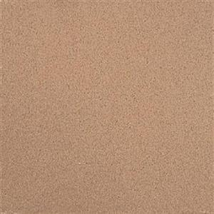 CeramicPorcelainTile QuarryNaturals 0N0322CHIP Desert