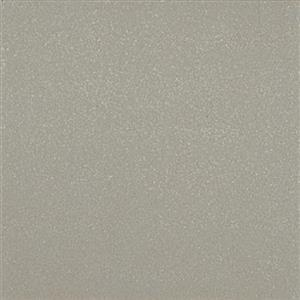 CeramicPorcelainTile QuarryNaturals 0N4622CHIP ShadowGray
