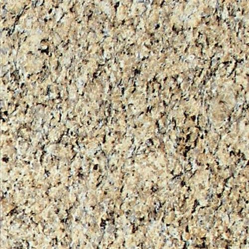 Granite Collection Giallo Ornamental 12 X 12 Polished G331