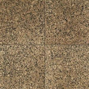 NaturalStone GraniteCollection G51844CHIPL DesertBrown12X12Polished