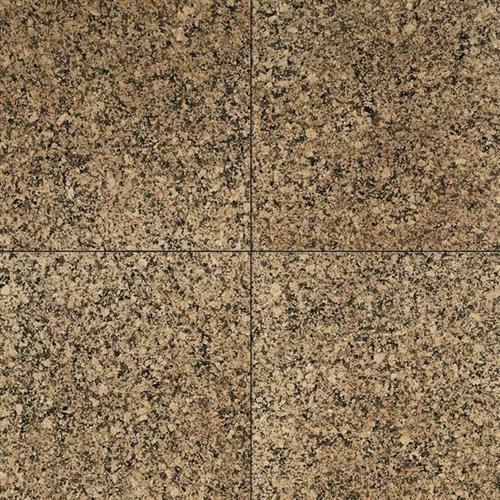 Granite Collection Desert Brown 12 X 12 Polished G518