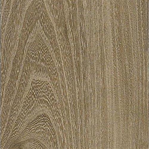 Premier Classics English Elm