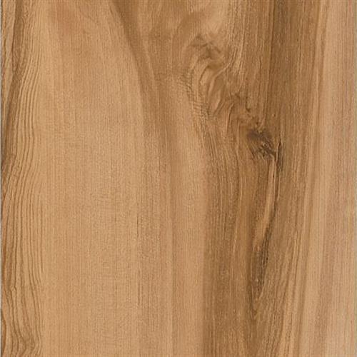 Planks - Golden Grove