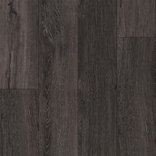 Parallel LVT 12 Mil Yosemite Bear