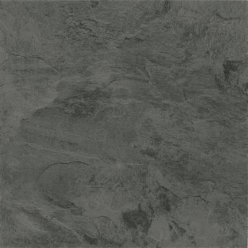 Alterna in Mesa Stone   Charcoal - Vinyl by Armstrong