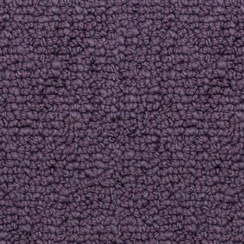 Presidio Purple Haze 6374