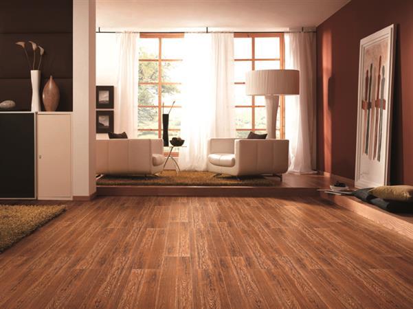 Wood Series Oak - Rectified