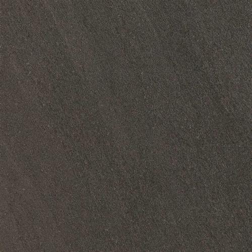 Kursaal Raven - 24X24