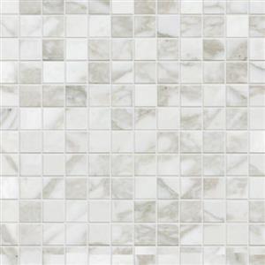 CeramicPorcelainTile Calacatta 5670-G MosaicNatural