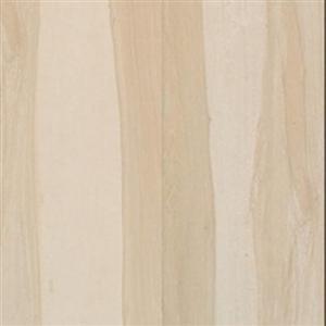 CeramicPorcelainTile Africa 5505-S White