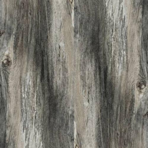Citrus Midnight Natural - 12X24