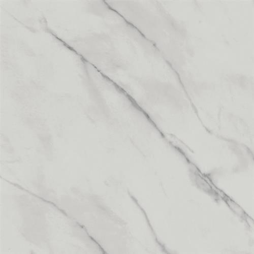 Marmi in Statuario  24x24 - Tile by Happy Floors
