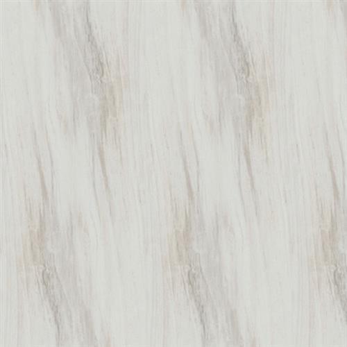 Kiwi Bianco - 6X24
