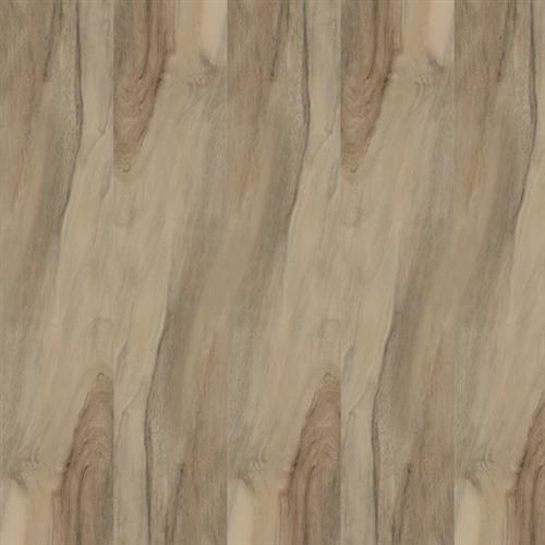 Kiwi Miele - 6X24