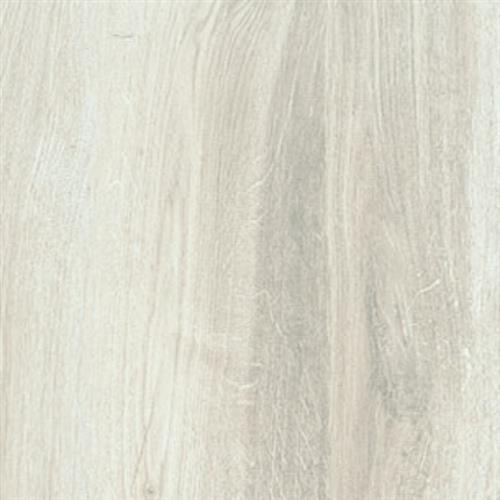 Northwind White - 6X36