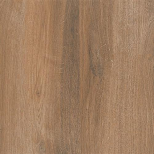 Northwind Brown - 6X36