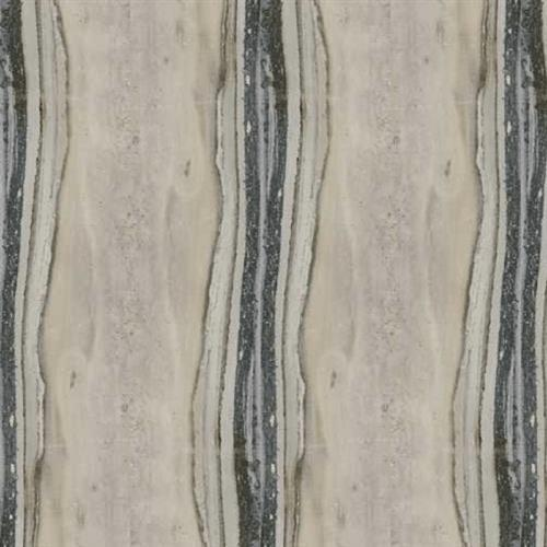 Exotic Stone Fossil Polished - 8X47
