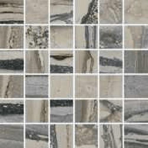 Exotic Stone Fossil Polished - Mosaic