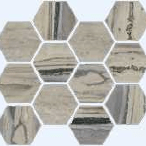 Exotic Stone Fossil Polished - Hexagon