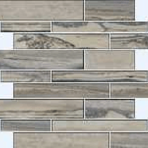 Exotic Stone Fossil Polished - Muretto