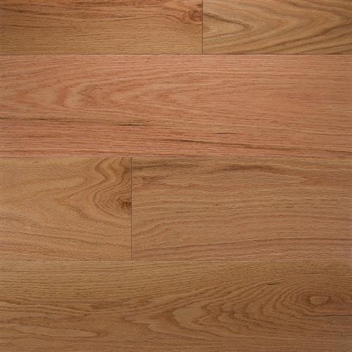 Natural Red Oak - 6