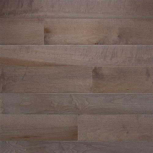 Specialty Collection Maple Greystone - Solid - 5