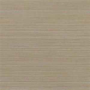CeramicPorcelainTile Silk CASIMA1224 Marfil
