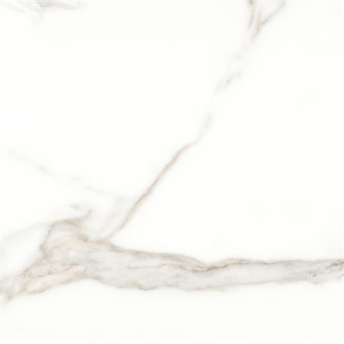 Mayfair Calacatta - 24X24 Matte