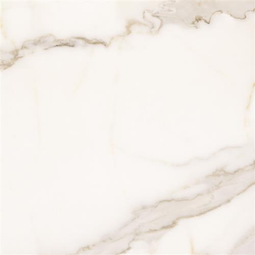 Imarmi Calacatta Bianco - Matte