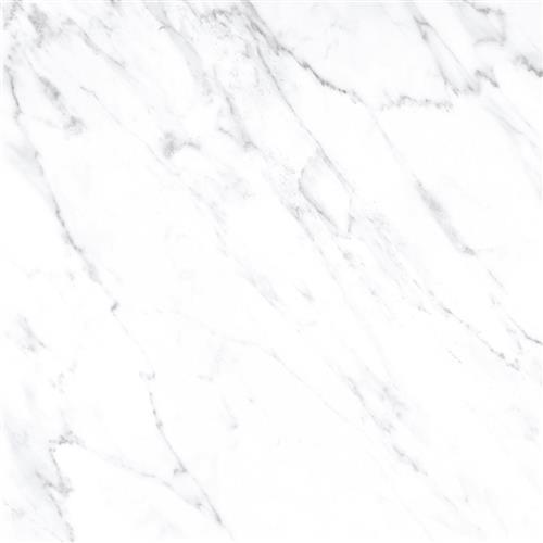 Calacatta White 12X12