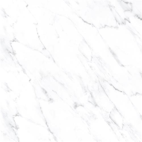 Calcatta White White Wall Tile 8X12
