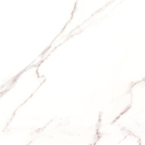 Massa Calacatta White